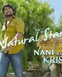 Natural star Nani