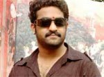 Young Tiger Ntr New Film Opening