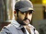 Forest Backdrop For Ntr Meher Ramesh Movie