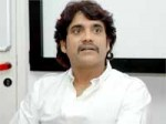 Nagarjuna Wants Jhummandi Naadam Heroine