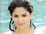 About Allu Arjun Love Story Vedam