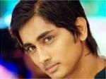 Siddharth New Film Bava Storyline