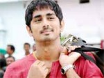 Siddharth Bava Releasing With Buyers