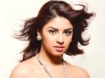 Richa Gangopadhyay Can Satisfy Rajamouli 260511 Aid