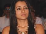I Want Act Maniratnam Film Trisha 300511 Aid