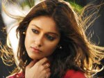Ileana More Focus On Her Business 130611 Aid