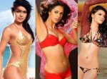 Advertisements On Heroines Bikini Aid
