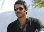 Prabhas A Powerful Action Role Rebel 281111 Aid