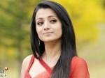 Trisha Pongal Luck Proves Aid