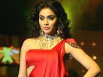 Shriya Gives Complaint Against Malayalam Producer Aid