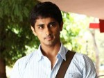 Siddharth Bags Vicky Donor Remake Rights