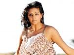 About Priyamani Charulatha Story