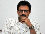 Venkatesh S Shadow Releasing As Sankranthi Treat