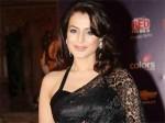 Amisha Patel Ready Strip All
