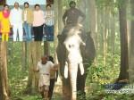 Prabhu Son Vikram Prabhu Movie Gajaraju
