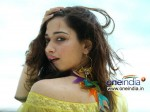 Tamanna Increases Her Remuneration To 2cr