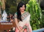 Samantha Voted Best Telugu Actress 2013 Beats Anushka Kajaj