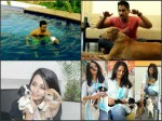 Photos Tollywood Stars With Their Pet Dogs