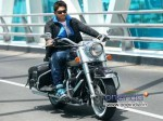 Allu Arjun To Act Under Lingusamy S Direction