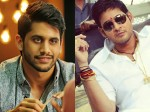 Is It True Dochey Dookudu Stories Are Same