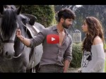Shahid Alia Starrer Shandaar Trailer Out One Lakh Hits In 24 Hours