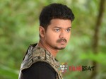 Puli Morning Shows Stalled