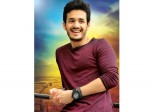 Akhil May Going To Risk Another Time