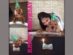 Genelia Celebrates Birthday Of Flash