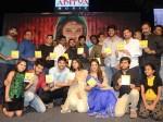 Nanna Nenu Naa Boyfriends Movie Audio Launch