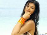 Ayesha Takia Looks Totally Different Latest Photos
