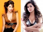 Did Priyanka Chopra Help Sister Meera Bag Canadian Fantasy