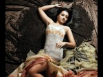 Trisha Krishnan Will Feature Hari S Saamy 2 With Vikram