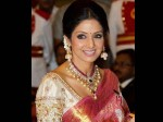 Sridevi Will Complete 50 Years Film Industry This July