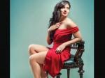 Pawan Kalyan Heroine Nikesha Patel Blasts On Tollywood Hero