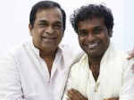 Tollywood Comedy King Brahmanandam And As Katti Reddy
