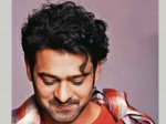 Latest Look Young Rebel Star Prabhas