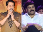 Many Times Actor Suman Clarifies About Gossips On Chiranjeevi
