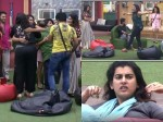 Deeksha Panth Others Re Entry Into Bigg Boss House