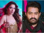 Tamannaah Bhatia I Have Special Relation With Ntr