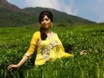 Actress Sadaf Changed Her Name