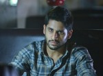 Yuddham Sharanam Is An Action Thriller With Realistic Touch Naga Chaitanya