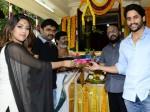 Naga Chaitanya Akkineni Maruthi Dasari Movie Launched