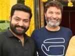 Ntr Trivikram Srinivas Movie Not Stalled