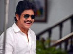 Nagarjuna About His Sons Career