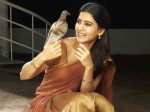 Samantha About The Change Her Life After Marriage