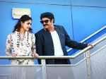 Jai Simha Ten Days Collections Report