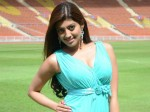 Pranitha Subhash Responds On Her Marriage