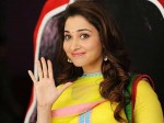 Tamannah New Movie Queen Telugu Reamake On Hold