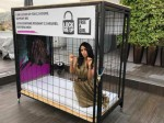 Mallika Sherawat Caged Cannes A Cause
