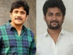Director Given Clarity About Nagarjuna Nani Film